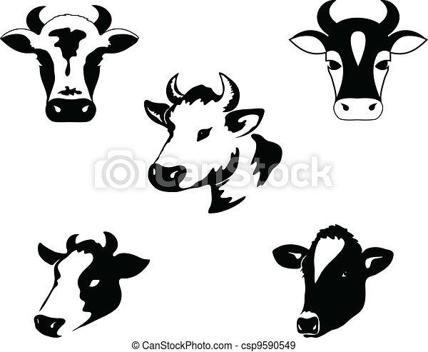Vaca - csp9590549