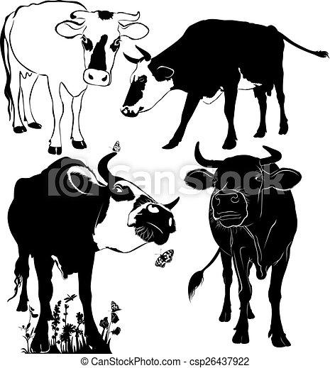 Vaca - csp26437922