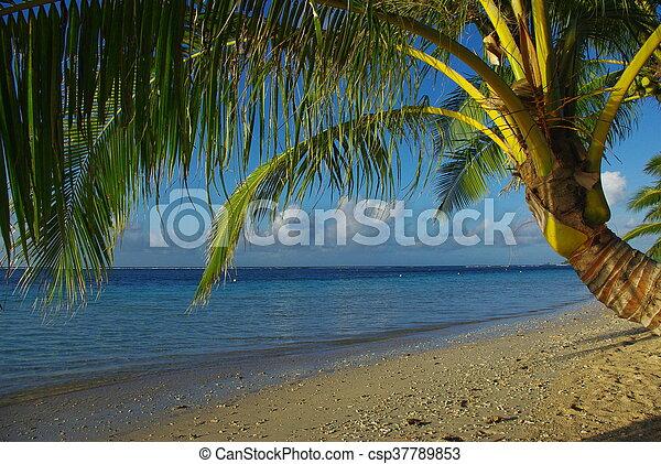 vacaciones - csp37789853