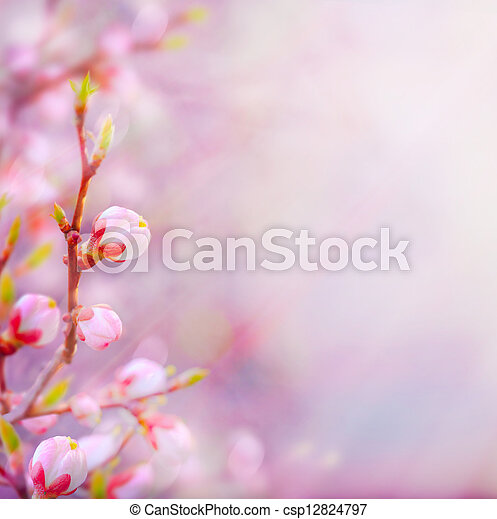 vacker, konst, fjäder, blomstrande, träd, bakgrund, sky - csp12824797