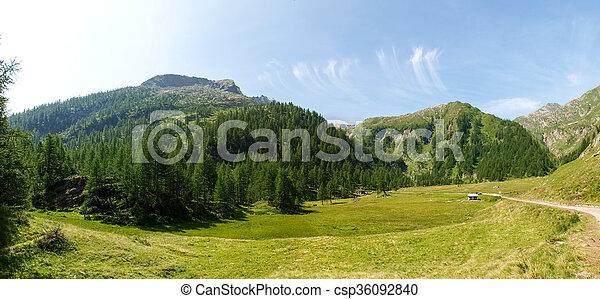 Val sambuco towards the lake Naret - csp36092840