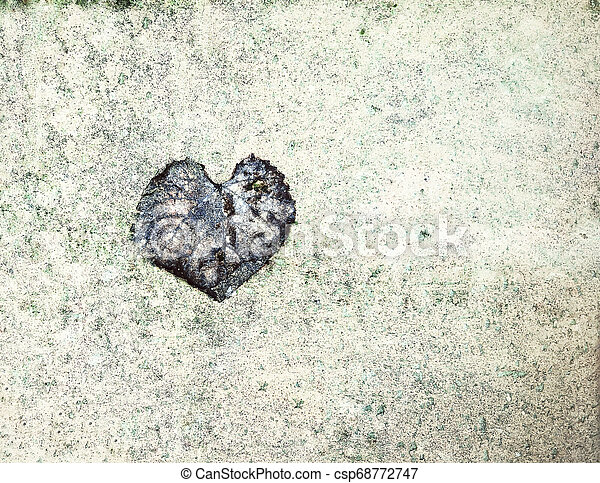 valentine background with naturally heart shaped leaf - csp68772747