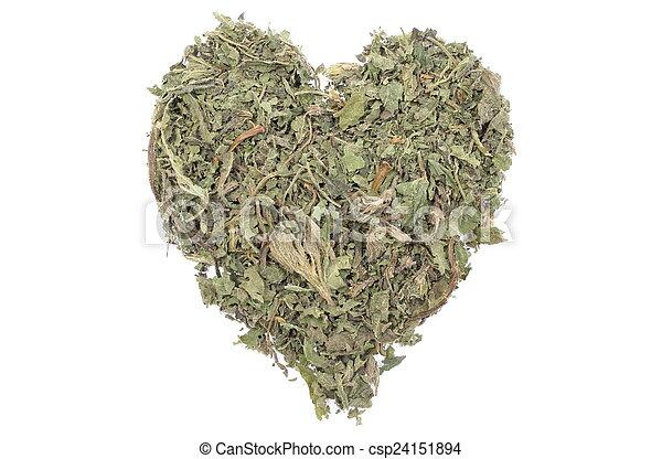 Valentine heart of dried nettle on white background - csp24151894