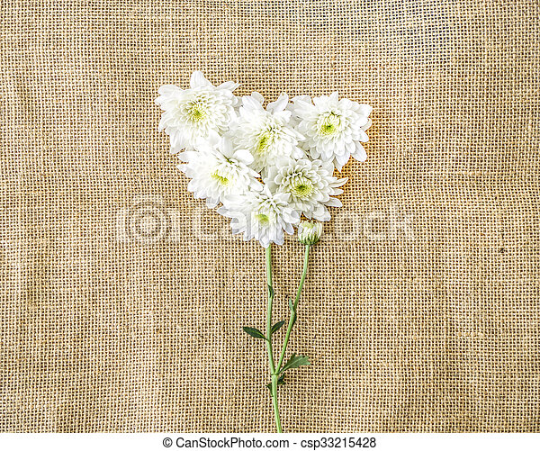 Valentines Day Heart Made of white chrysanthemum on canvas background - csp33215428