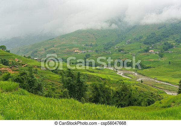 Mountain Valley Con Laderas Cubiertas De Terrazas De Arroz