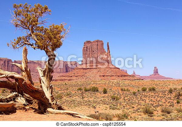 Monument Valley - csp8125554