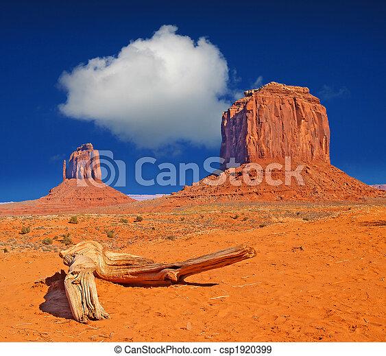 Monument Valley Navajo Park tribal - csp1920399