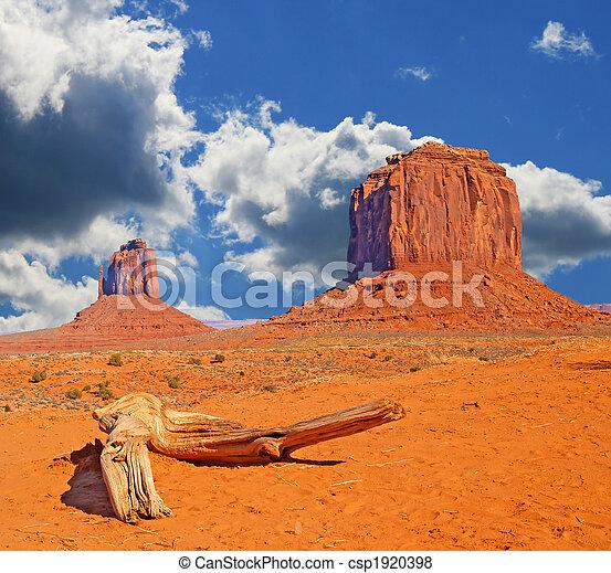 Monument Valley Navajo Park tribal - csp1920398