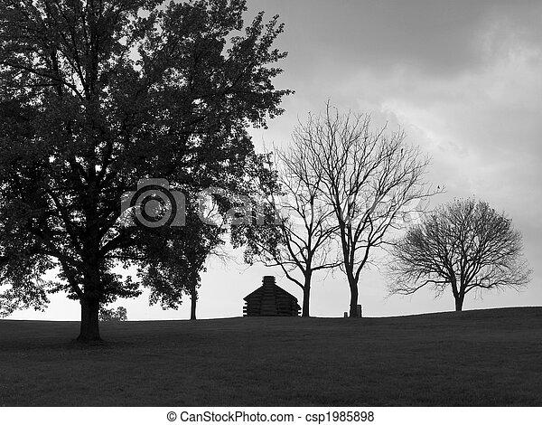 Valley Forge Hillside - csp1985898