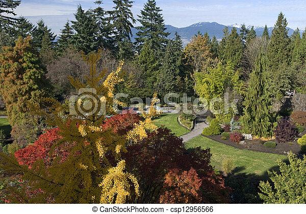 Vancouver - Queen Elizabeth Park in the fall - csp12956566