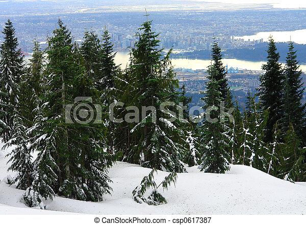 Vancouver View - csp0617387
