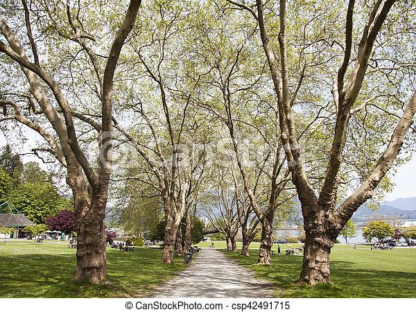 El callejón del parque de Vancouver - csp42491715