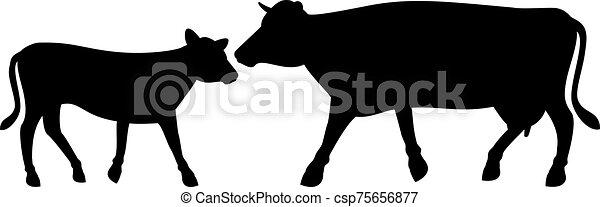 vaquita, ilustración, vector, vaca - csp75656877