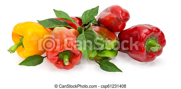 Varicolored bell peppers and twig with leaves on white background - csp61231408