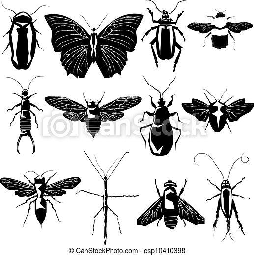 varietà, vettore, silhouette, insetto - csp10410398