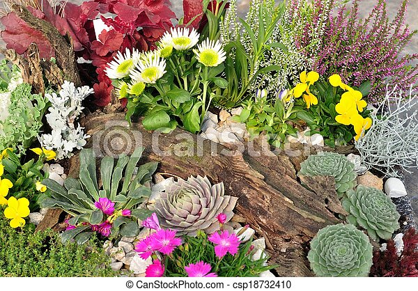 Variety of colorful flowers - csp18732410
