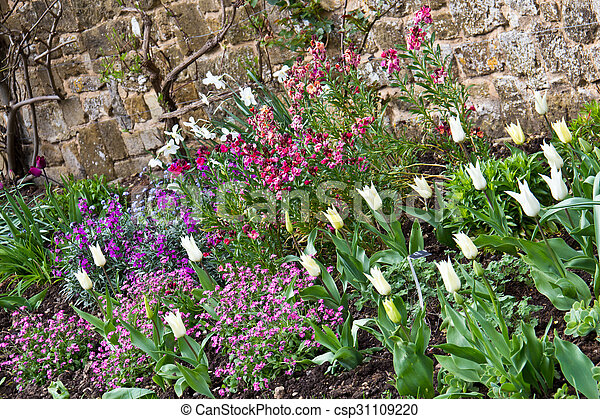 Variety of colorful springtime flowers in bloom in a garden - csp31109220