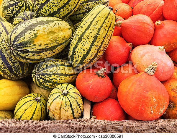 Variety of squashes at the autumn market - csp30386591