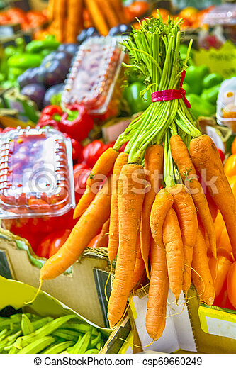 Variety of Vegetables with Carrot on Foreground. - csp69660249