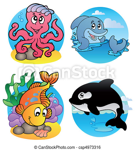 Various aquatic animals and fishes - csp4973316