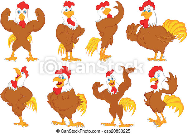 various rooster cartoon - csp20830225