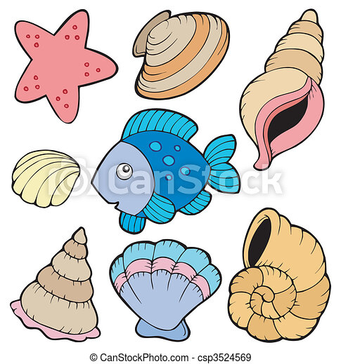 Various shells and fish collection - csp3524569