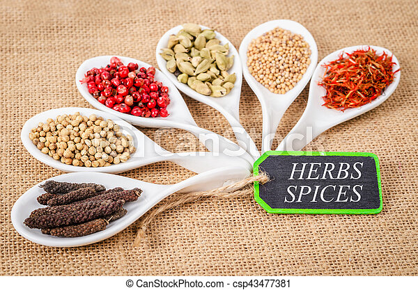 various spices and herbs with herbs spices label - csp43477381