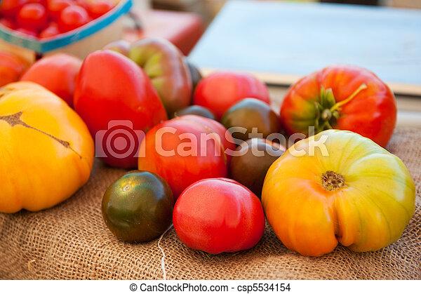 Various tomatoes - csp5534154