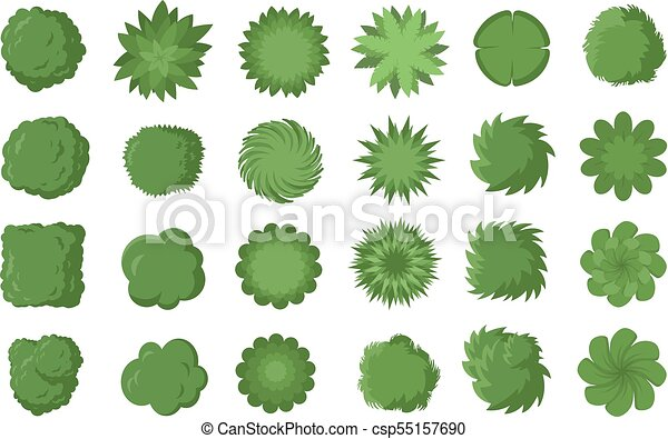 Various Trees Bushes And Shrubs Top View For Landscape Design Plan Vector Illustration Isolated