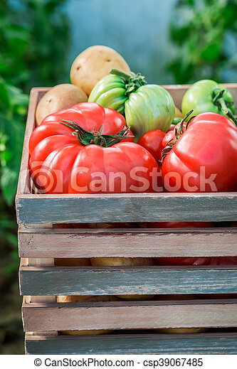 Various vegetables in wooden box - csp39067485