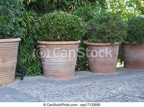 Quattro vasi terracotta grande verde plants rotondo for Vasi in terracotta prezzi