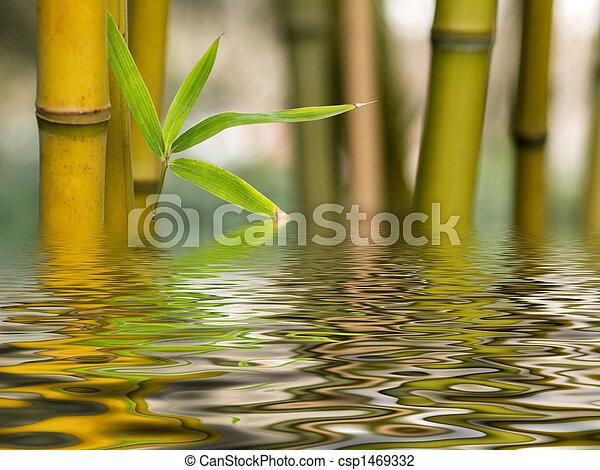 vatten, bambu, reflexion - csp1469332