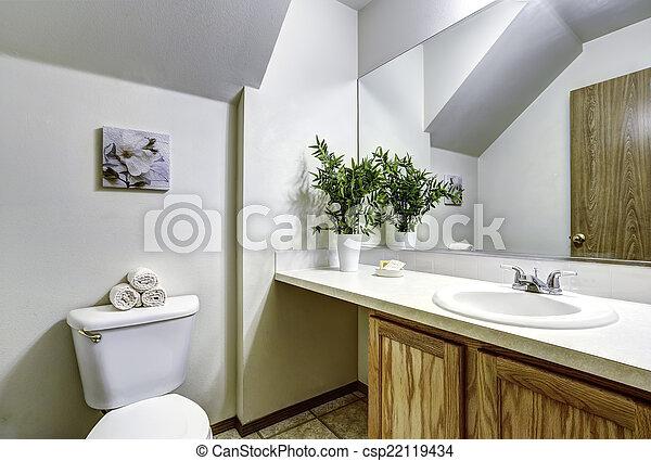 Bagno Legno Bianco : Vaulted bianco soffitto bagno bagno legno pianta gabinetto