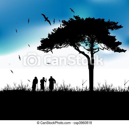 vecchie persone, natura, tre, insieme, passeggiata - csp3960818