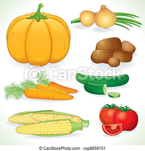 vechetables, récolte - csp6659151