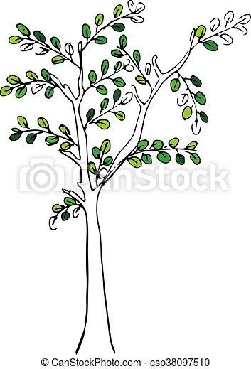 vecteur, arbre - csp38097510