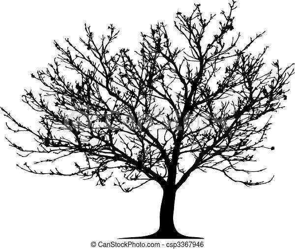 vecteur, arbre - csp3367946