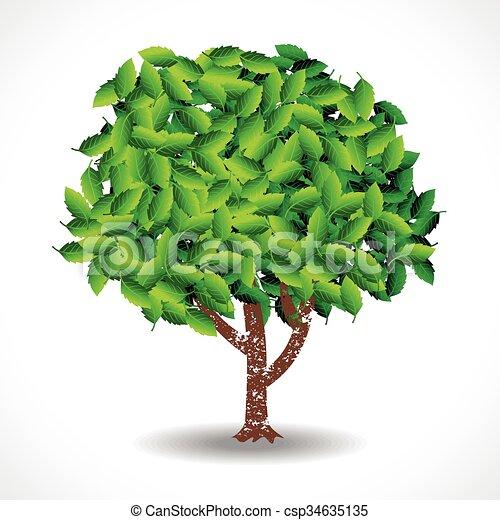 vecteur, arbre - csp34635135