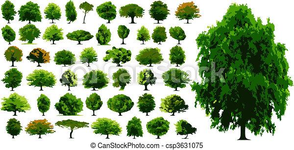 vecteur, arbres - csp3631075
