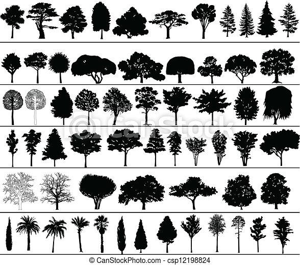 vecteur, arbres - csp12198824