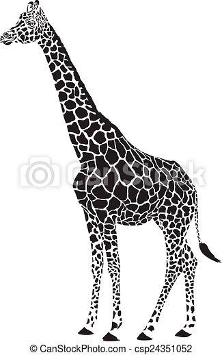 Vecteur Blanc Girafe Noir Isole Girafe Vecteur Arriere