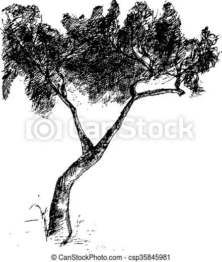 vecteur, dessiné, arbre., illustration, main - csp35845981