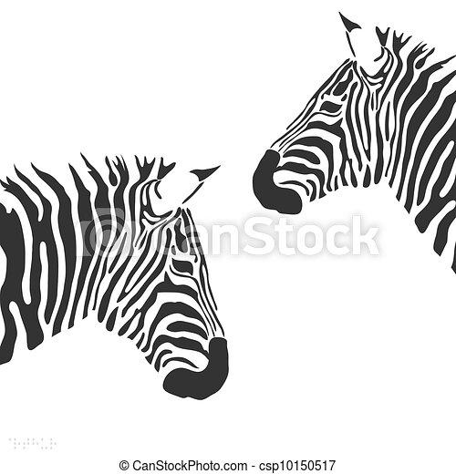 vecteur, zebra - csp10150517