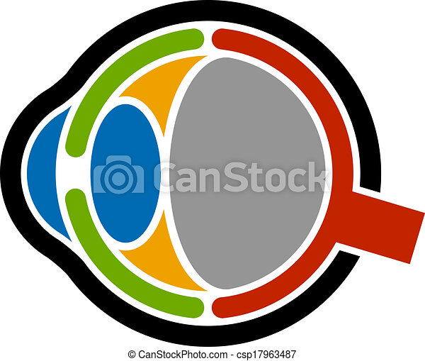 vector anatomy human eye icon - csp17963487
