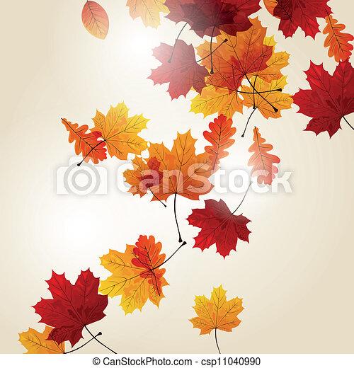 Vector Autumn Leaves - csp11040990