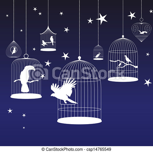 Vector background with birds cages - csp14765549