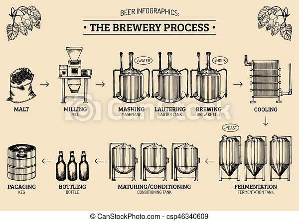 Vector beer infographics with illustrations of brewery process. - csp46340609