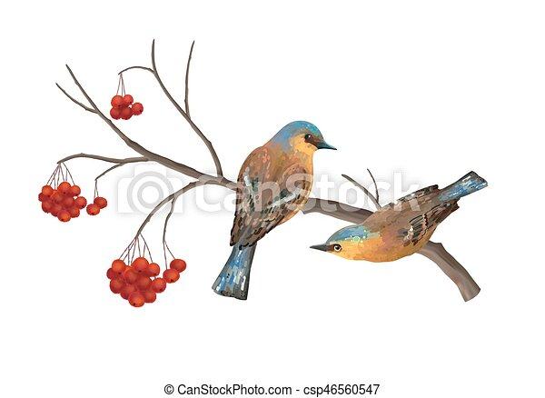 Vector Birds on Branch - csp46560547
