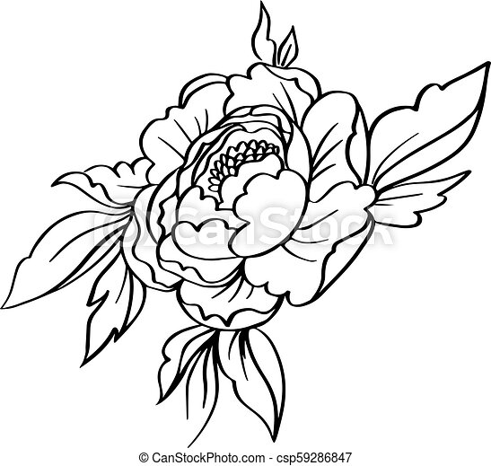 Flower Simple Flower Clipart Black And White