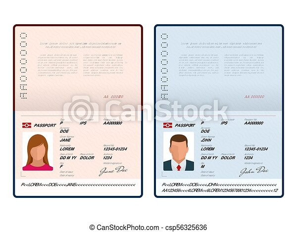 Vector Blank open passport template  International passport with sample  personal data page  Document for  Isolated vector illustration